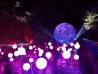 Oak Valley Sonata of Light 3D Festival