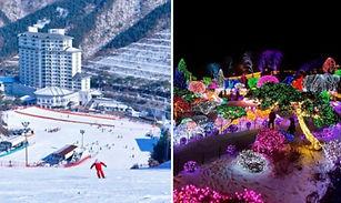 Elysian Gangchon Ski Resort + Garden of Morning Calm Light Festival