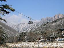 Seoraksan National Park & Sokcho City Sightseeing Day Tour