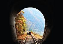 Gangchon Rail Park - Autumn.jpg