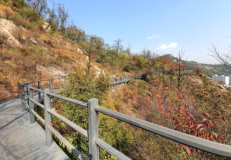 Mountain Ansan Jarak-gil Trail & getting there | Seoul, South Korea