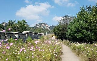 Seoul City Wall Hike (Inwangsan Mt. Trail)