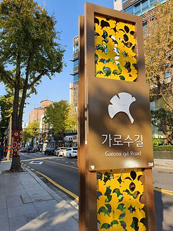 TOP Autumn Foliage Places in/outside Seoul - Sinsadong Garosu-gil | KoreaToDo