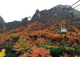 Seoraksan National Park + Nami Island (Garden of Morning Calm)