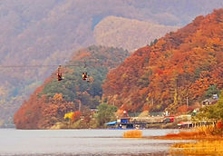 TOP Autumn Foliage Places in/outside Seoul - Nami Island | KoreaToDo