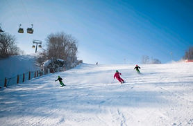 Phoenix Pyeongchang Ski Resort All-Day Lift, Rental & Snow Village