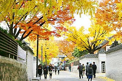 TOP Autumn Foliage Places in/outside Seoul - Samcheongdong | KoreaToDo