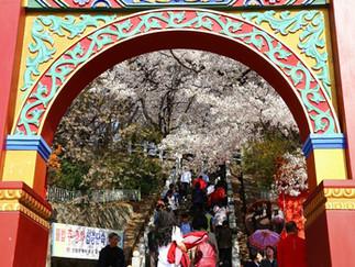 Jayu Park@Incheon