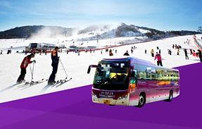 Seoul/Airport ↔ Alpensia Ski Resort Shuttle Bus