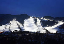 Recommended Day Tours from Seoul - Jisan Forest Ski Resort Night Time Skiing + Everland | KoreaToDo