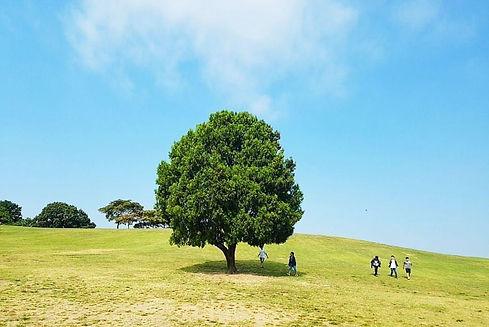 Top Hidden Places in Seoul - Olympic Park | KoreaToDo