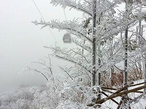 Top Winter Places & Activities