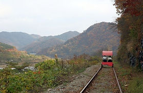 Nami Island, Gangchon Rail Bike & The Garden ofMorning Calm Day Tour