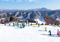Recommended Tours from Seoul - Gangwon-do Elysian Gangchon Ski Resort Day Tour | KoreaToDo