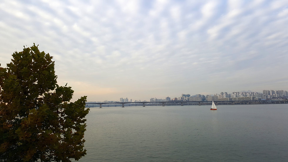 Wellness & Fitness in Seoul - Relax along Han River at Ttukseom Hangang Park | KoreaToDo