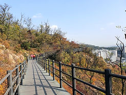 TOP Autumn Foliage Places in/outside Seoul - Mountain Ansan Jarak-gil Trail | KoreaToDo