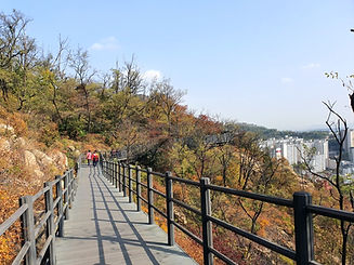 Top Hidden Places in Seoul - Mountain Ansan Jarak-gil Trail | KoreaToDo