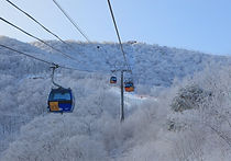 Recommended Transfers from Seoul - Shared Shuttle Bus Transfers betw. Seoul & Alpensia/Yongpyong Ski