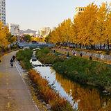 Cheonggyecheon Stream - Autumn.jpg