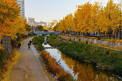TOP Autumn Foliage Places in/outside Seoul - Cheonggyecheon Stream | KoreaToDo