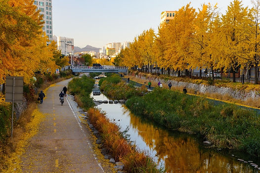 Cheonggyecheon Stream - Autumn Scene