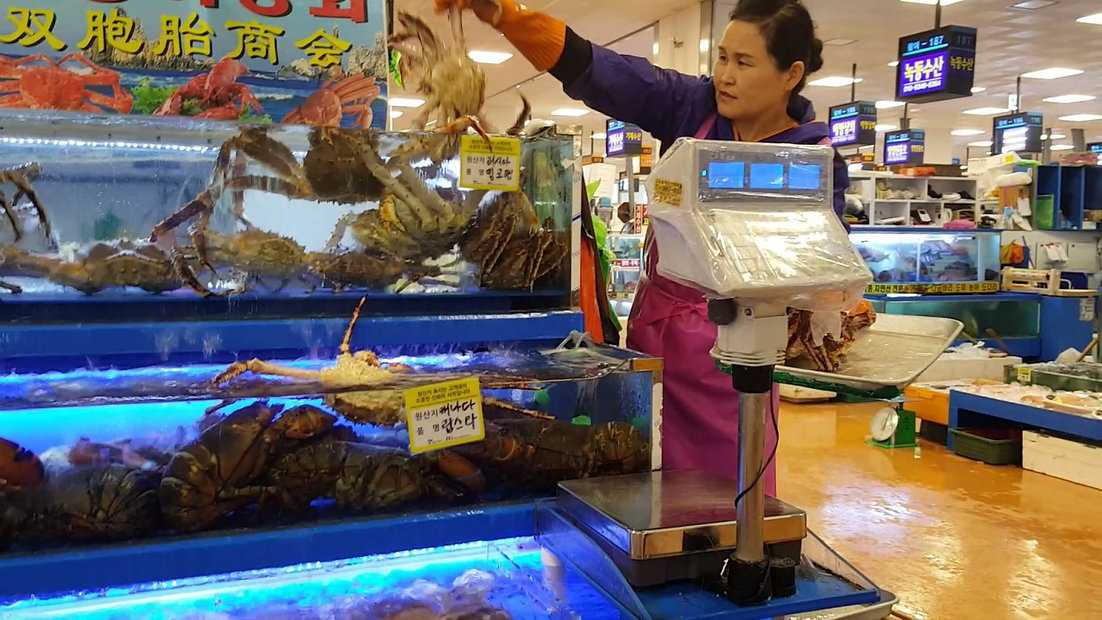 Noryangjin Fisheries Wholesale Market & getting there | Seoul, South Korea