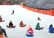 Recommended Day Tours from Seoul - Jisan Snow Sled | KoreaToDo