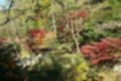 Bukhansan National Park - Bogukmun Course in Autumn   KoreaToDo