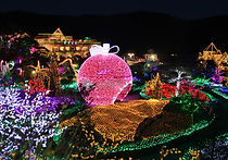 Recommended Tours from Seoul -  Herb Island Illuminating Festival Tour | KoreaToDo