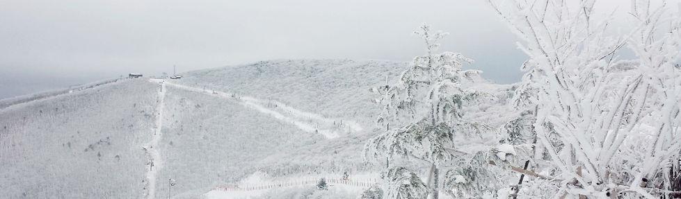 High1 Ski Resort in Winter | KoreaToDo