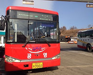 Daegwallyeong Sheep Farm - Shuttle Bus from Hoenggye Intercity Bus Terminal | Pyeongchan, South Korea