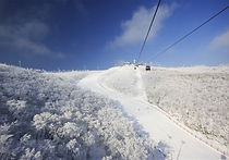 Recommended Tours from Seoul - High1 Resort One Day Ski Tour | KoreaToDo
