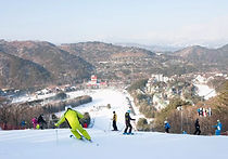 Recommended Tours from Seoul - Yongpyong Resort One Day Ski Tour | KoreaToDo