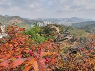 Mountain Ansan