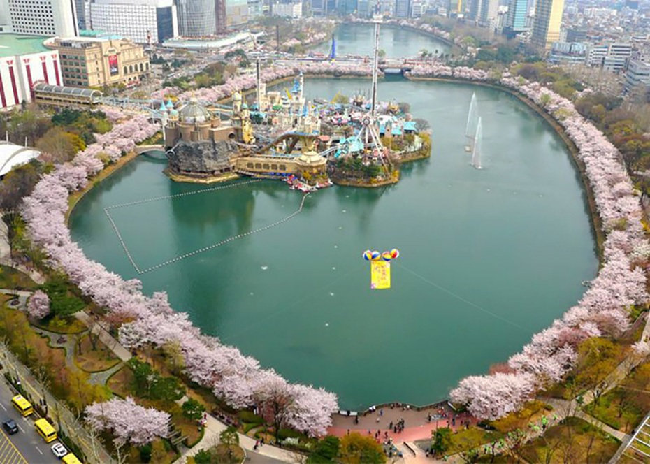 Top Places for Cherry Blossoms & Spring Flowers in Seoul - Seokchon Lake Cherry Blossom Festival | KoreaToDo