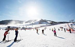 Private Ski/Snowboard Lesson: Alpensia Ski Resort (Lesson Only)