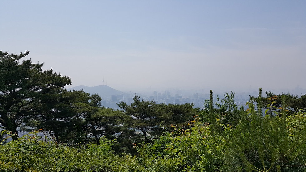Seoul City Wall - View of Namsan Mountain & N Seoul Tower | KoreaToDo