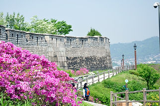 Seoul City Wall Hike (Naksan Mt. Trail)