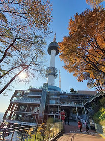 N Seoul Tower - Hiking to Namsan Library