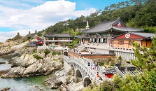 East Busan Exploration Full Day Tour
