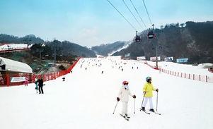 2D1N Ski/Snowboard Tour: Vivaldi Park Ski Resort