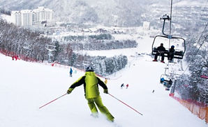 Seoul/Airport ↔ Yongpyong Ski Resort Shuttle Bus