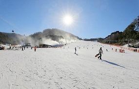 Yongpyong Ski Resort Room Reservation