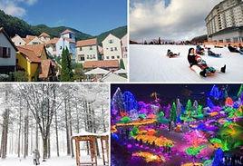 Elysian Resort + Nami + Petite France + Garden of Morning Calm Lighting Fest.