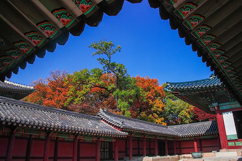 Changdeokgung Palace & Secret Garden - Autumn Foliage & Getting There | Seoul, South Korea
