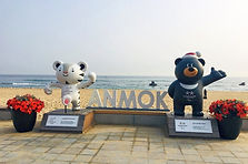 Gangneung Romantic Day Tour