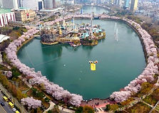 Lotte World Tower Seoul Sky Admission