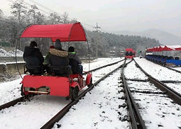 Nami Island, Gangchon Rail Bike & The Garden of Morning Calm Day Tour