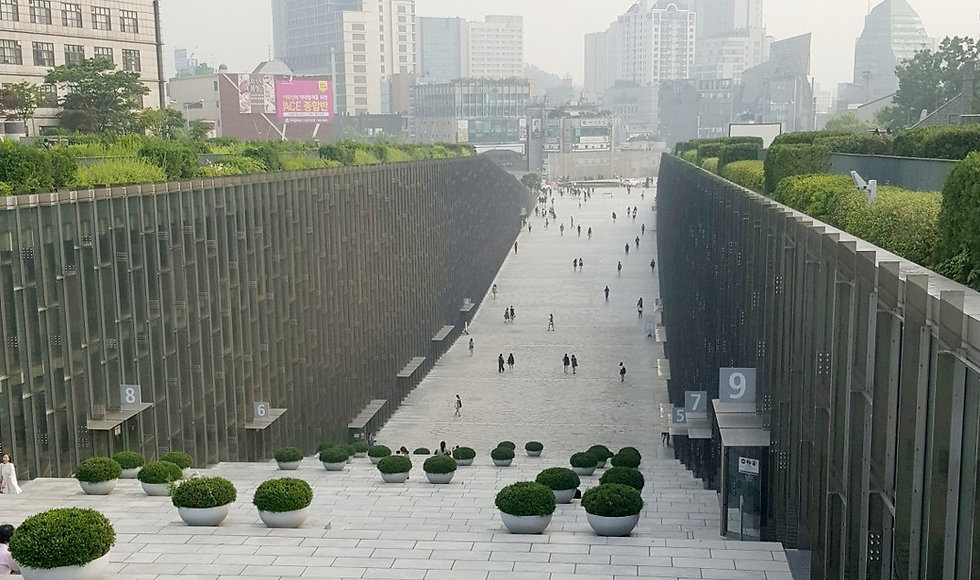 Ewha Womans University - Spring & Getting There | Seoul, South Korea