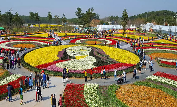 Taean World Tulip Festival 2021 & LED Light Festival